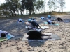 dscn0053-beach-yoga